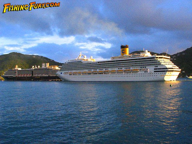 Chasing Barracuda  Anegada British Virgin Islands