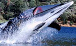 Bionic Dolphin Watercraft