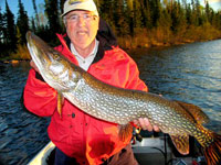 Canadian northern pike