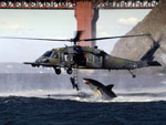 Great white attack helicopter