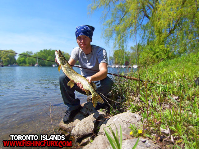 Toronto Islands Pike Fishing