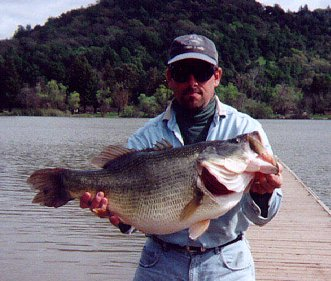 Worlds Largest Large Mouth Bass