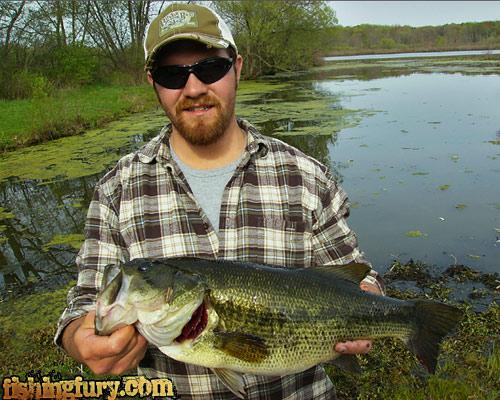 8 pound bass