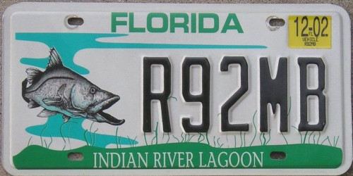 Florida Snook plate