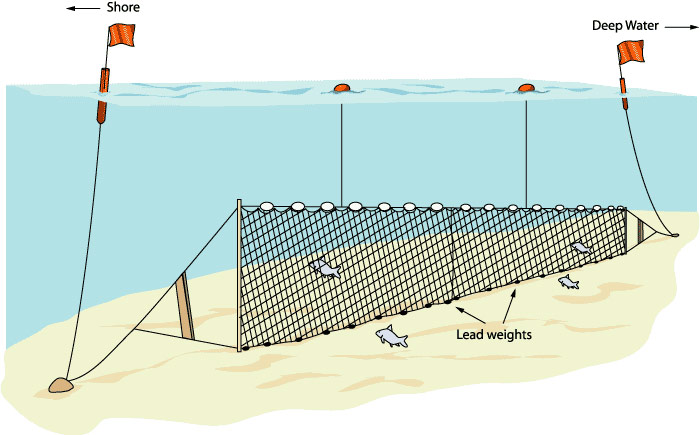 Gill fish nets for Gill net fishing