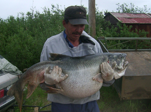 World Record Lake Trout
