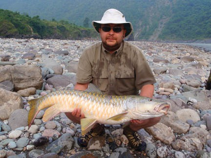 Golden mahseer