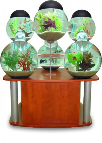 The Labyrinth Aquarium
