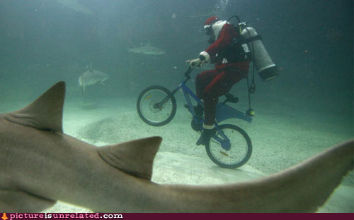 Santa loves sharks