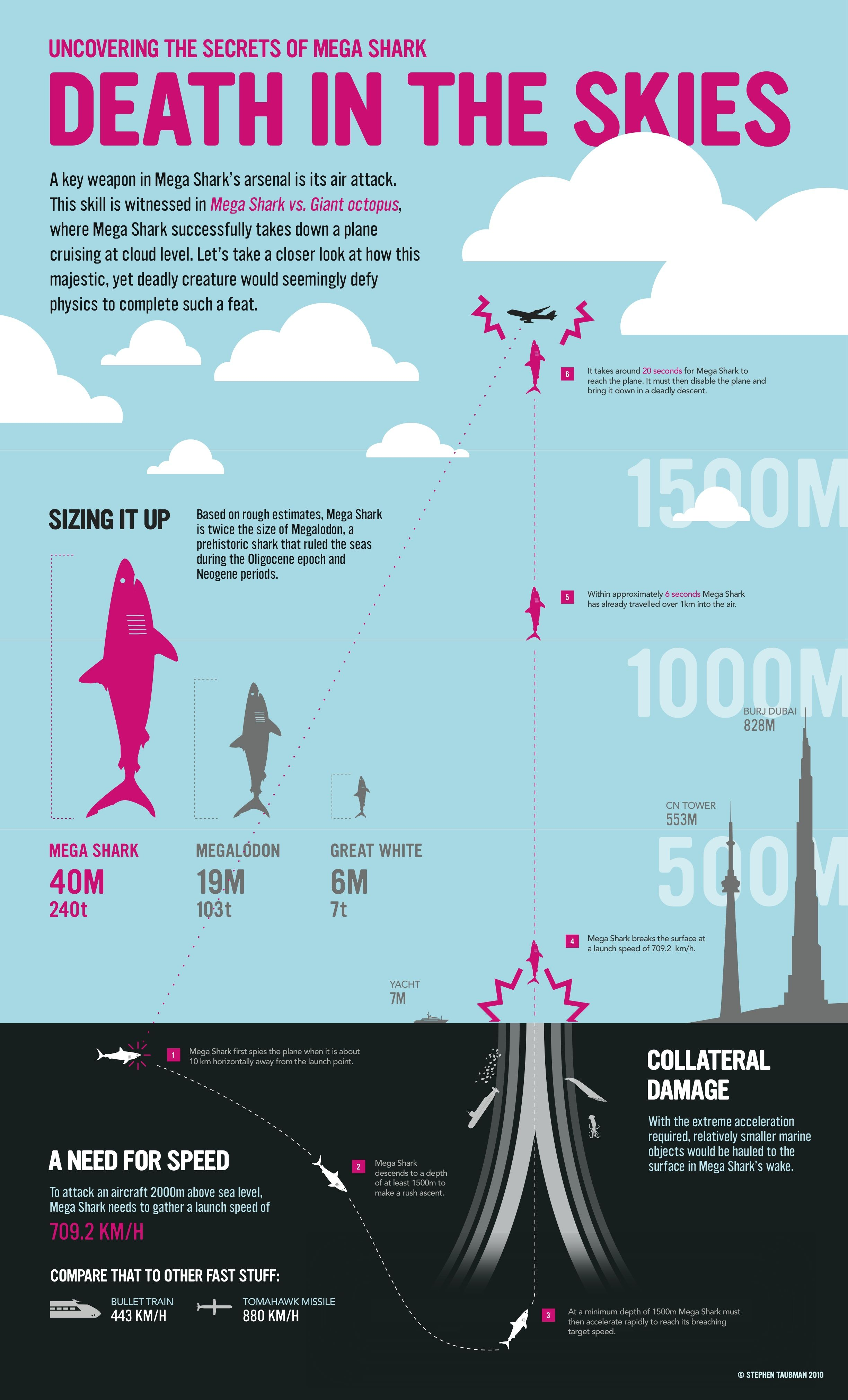 Image of Mega Shark Infographic