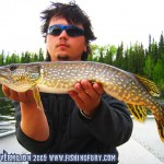 Average Pike