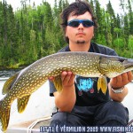 Beautiful Pike