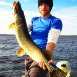 Great Northern Pike