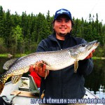 Jons First Little Vermilion Pike