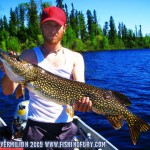 Little Vermilion Pike