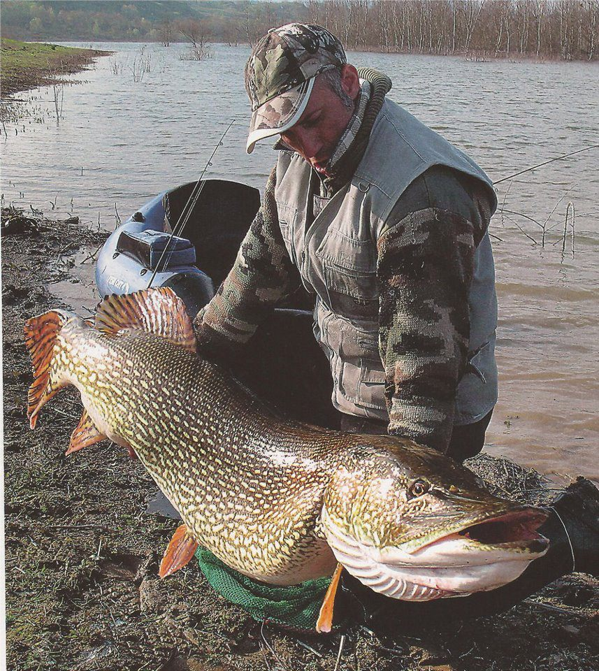 World Record Northern Pike for Pinterest