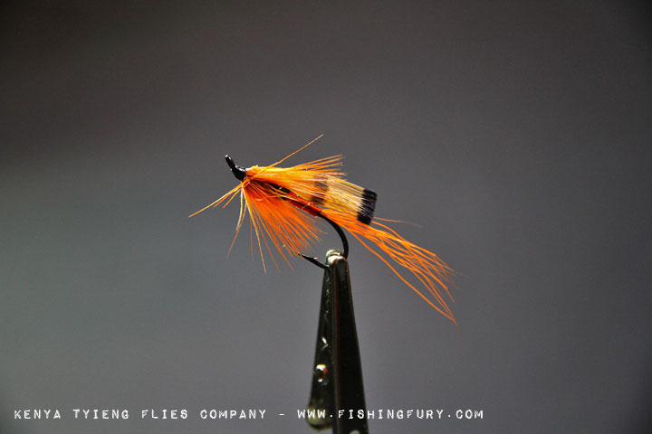 Ally Shrimp (Orange)