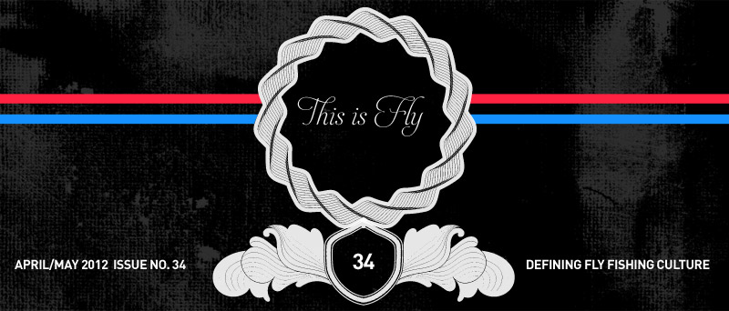 this is fly 34