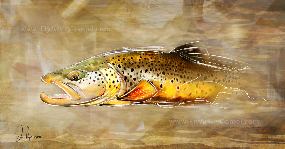 fly fishing drawing - photo #47