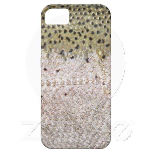 iPhone4 Case - Steelhead