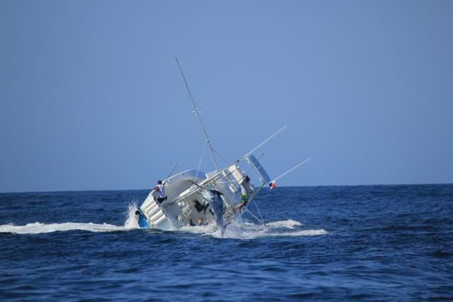 Marlin VS Boat